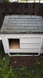medium dog house for FREE