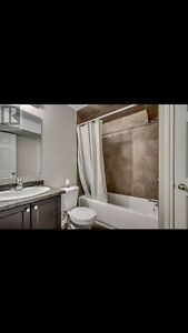 Bright spacious rooms for rent London Ontario image 1