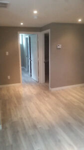 1+1 Bed 1.5 Bath, Renovated, Private Laundry, Private Meter Utls