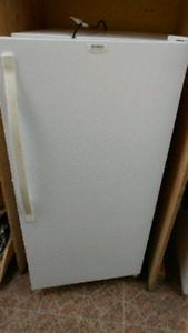 Smaller stand up freezer