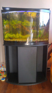 36 Gallon Bowfront Aquarium with Stand