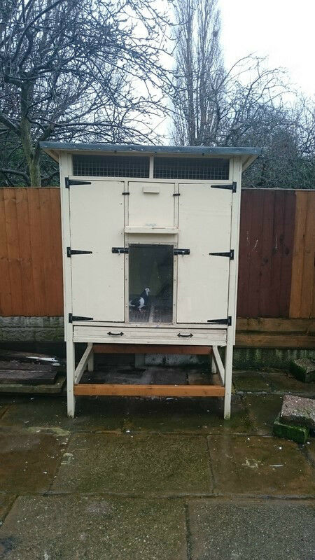 Pigeon shed for sale uk kent