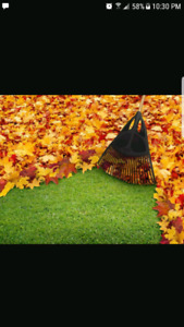 LEAF CLEANUP(county areas)