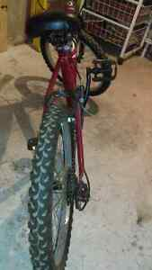 Kids Mongoose 5 Speed Mountain bike 30 DOLLARS OBO FAST SALE  Oakville / Halton Region Toronto (GTA) image 8