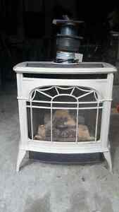 Vermont Castings natural gas Decorative free standing stove