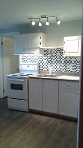 1-Bedroom Modern Apartment