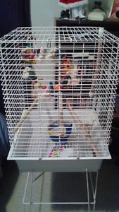 Bird cage brand new/ never used