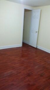 Spacious, Clean One Bedroom Basement Apartment in the JUNCTION