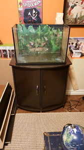 20 gallon aquarium with stand