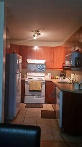 Appartement a louer a partir du 15 novembre