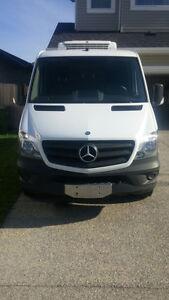 2014 Mercedes-Benz Sprinter Van Minivan, Van