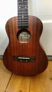 Beaver Creek Tenor Uke with bag and electronics