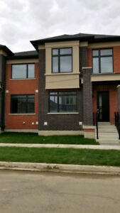 Brand New 3 BR House for Rent Mississauga & Wanless Brampton.