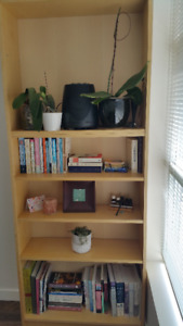Must Sell Book Case - $30 (Mount Pleasant)