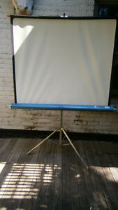 Vintage Radiant Screenmaster Projector Screen