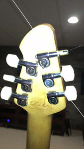Wanted: Schaller Mini Tuners