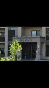 Full furnished 1 bedroom apartment in 700 Kings London Ontario image 1
