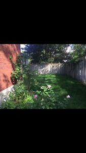 Spring lawn care / cutting and Spring cleanup Kingston Kingston Area image 8