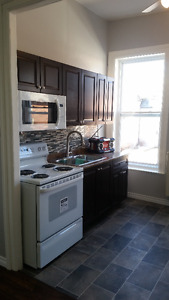 Newly Renovated 2 bedroom apartment in Colborne