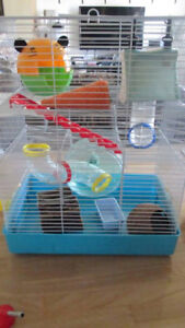2 cage a hamster