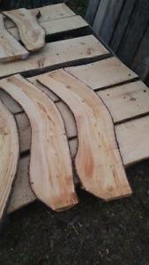 Live edge white pine slabs
