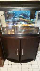 20 Gallon Aquarium with stand almost new