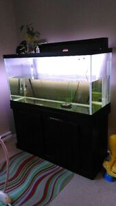 GLASS AQUARIUM 90 Gallon