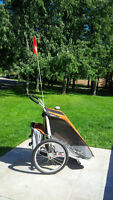 Chariot Cougar 1 Bike Trailer (Barely Used)
