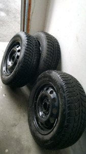 Uniroyal tiger paw winter tires on Ford focus rims