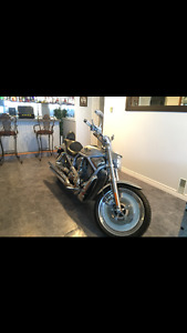 2003 V-Rod for sale