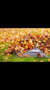 FALL YARD CLEAN UP by JMR HANDYMAN SERVICES Windsor Region Ontario image 1