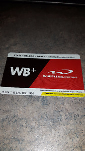 Whistler Blackcomb one day ticket