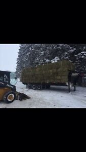 2nd cut small square bales