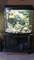 32 Gallon Bow Fish Tank