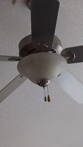 Ceiling Fans, Chandelier, Hall Lights