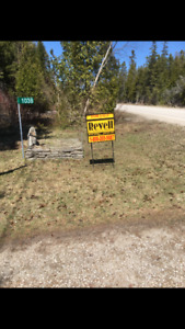 For sale house/cottage Lake Huron