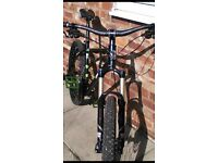 Alloys ragley mountain bike