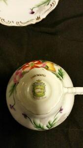 Trimont China - Tea Cup and Saucer Belleville Belleville Area image 2