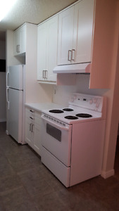 Spacious & renovated 2 bedroom apartment