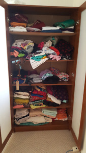 Cabinet with shelves pantry or wardrobe