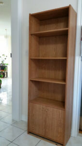 Shelving Unit with doors and adjustable shelves
