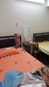 One roommate needed for a shared room (Only female student)