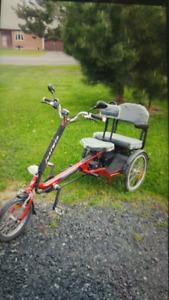 3 wheeled pedal assisted e-bike
