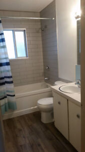 Newly Renovated 2 Bedroom 1 Bathroom for Rent - Wainwright