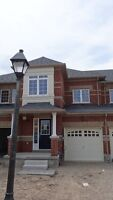 Brand New 3 Bedroom Townhouse -Orangeville