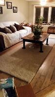 carpet repairs and installs