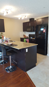 Looking for Roommate in a 2 Bed 2 Bath Condo