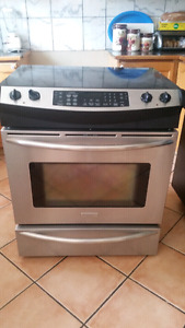 Stainless steel frigidaire induction range..