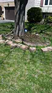 Outdoor cleanups Cornwall Ontario image 1