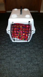 "Cat carrier for sale. 12""X12""X19"". ($30.00, or best offer.)"